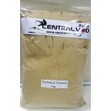 Prediegest Fishmeal Centralvod Baits 1kg