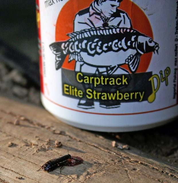 IB Carptrack Amino Dip 150ml- Elite Strawberry